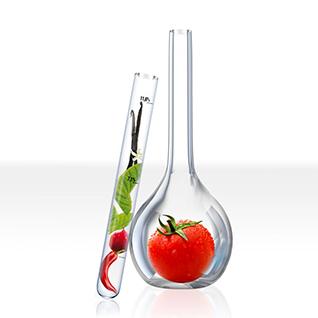 Institut de beauté Angelys Nutridermologie Ella Baché Tomate