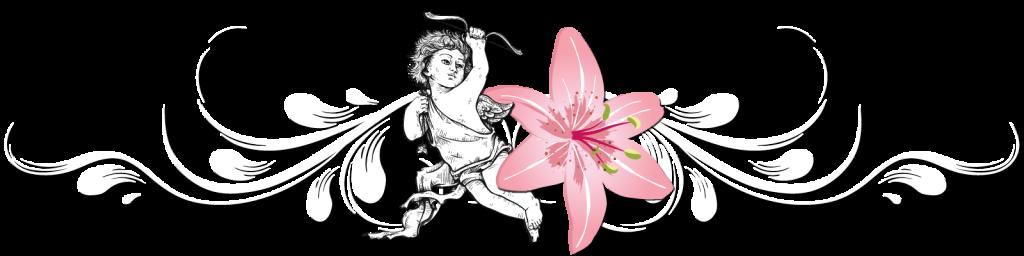 Logo Angelys institut de beauté à Tonnerre